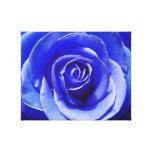 Color de rosa azul impresiones en lienzo estiradas