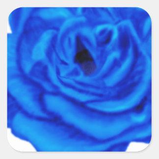 Color de rosa azul calcomanía cuadradas personalizadas