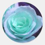Color de rosa azul pegatina redonda