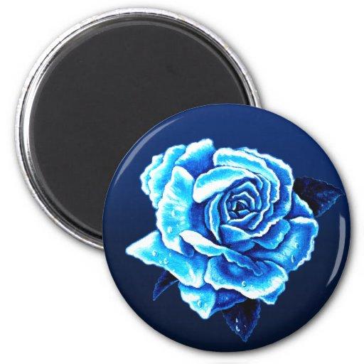 Color de rosa azul pintada imán