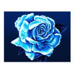 Color de rosa azul pintada postales