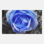 Color de rosa azul rectangular pegatina