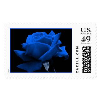 Color de rosa azul sello