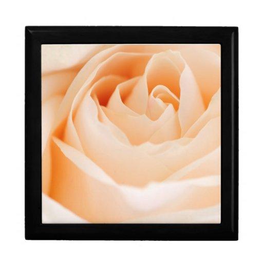 Color de rosa beige caja de recuerdo