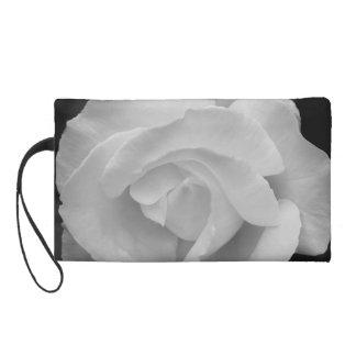 Color de rosa blanco y negro