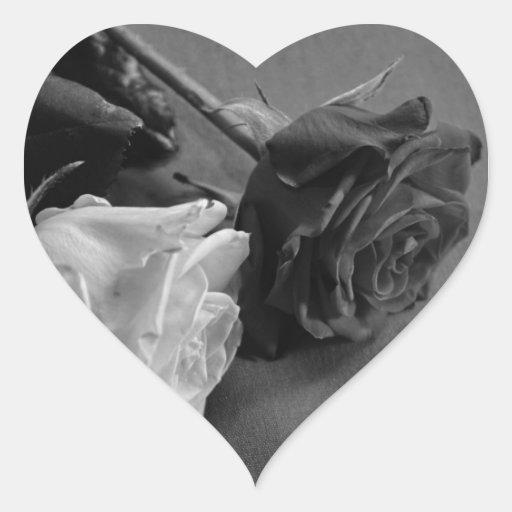Color de rosa blanco y negro, foto de B&W Colcomanias De Corazon