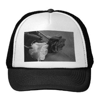 Color de rosa blanco y negro gorros