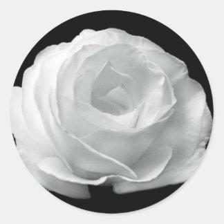Color de rosa blanco y negro pegatina redonda