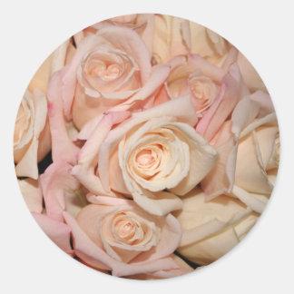 color de rosa blanco y rosado pegatina redonda