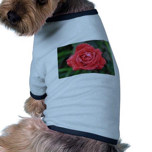 Color de rosa camiseta de perrito