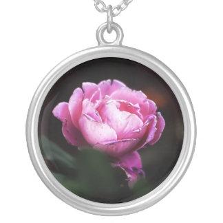 Color de rosa joyerias