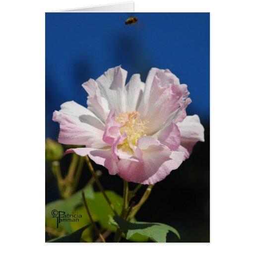 Color de rosa confederado con la abeja tarjetón
