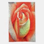 Color de rosa coralino toalla
