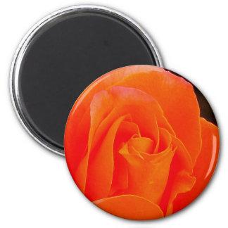 Color de rosa de color naranja imán redondo 5 cm