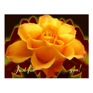 Color de rosa de oro en la hoja estilizada postal