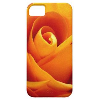 Color de rosa de oro iPhone 5 Case-Mate cobertura