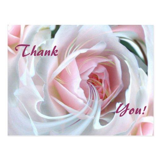 Color de rosa delicado con los efectos de mármol tarjeta postal