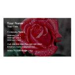 Color de rosa, el jardín de Shropshire, después de Plantilla De Tarjeta De Negocio