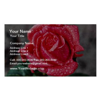 Color de rosa, el jardín de Shropshire, después de Tarjetas De Visita