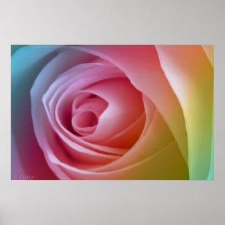 Color de rosa en colores pastel impresiones