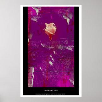 Color de rosa encantada posters