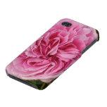 Color de rosa enorme iPhone 4 cárcasas