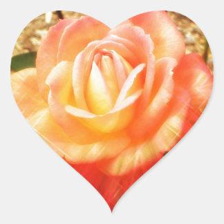 Color de rosa fabuloso pegatina de corazon personalizadas