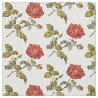 Color de rosa francés antiguo elegante telas
