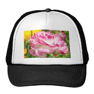 Color de rosa gorros bordados