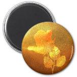 Color de rosa impresa romántico del oro del papel  imán de frigorifico