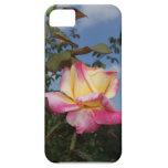 Color de rosa iPhone 5 carcasa