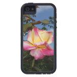 Color de rosa iPhone 5 Case-Mate cobertura