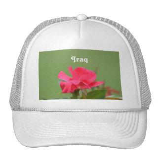 Color de rosa iraquí gorros