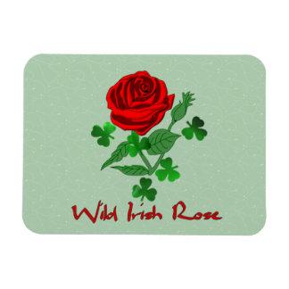 Color de rosa irlandés salvaje iman rectangular