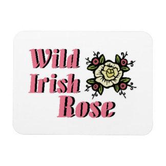 Color de rosa irlandés salvaje imán de vinilo