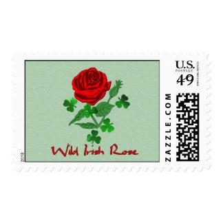 Color de rosa irlandés salvaje sello postal