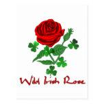 Color de rosa irlandés salvaje tarjetas postales