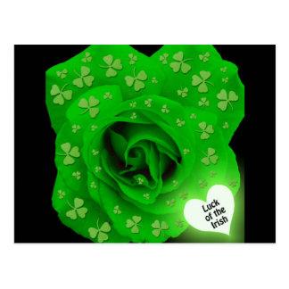 Color de rosa irlandés - suerte del irlandés postal
