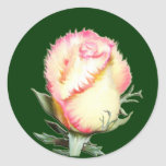 Color de rosa llameante pegatinas