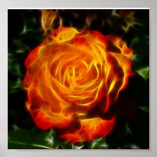 Color de rosa magnífico en el fuego posters