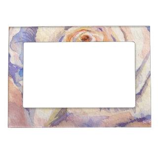 Color de rosa marcos magnéticos de fotos