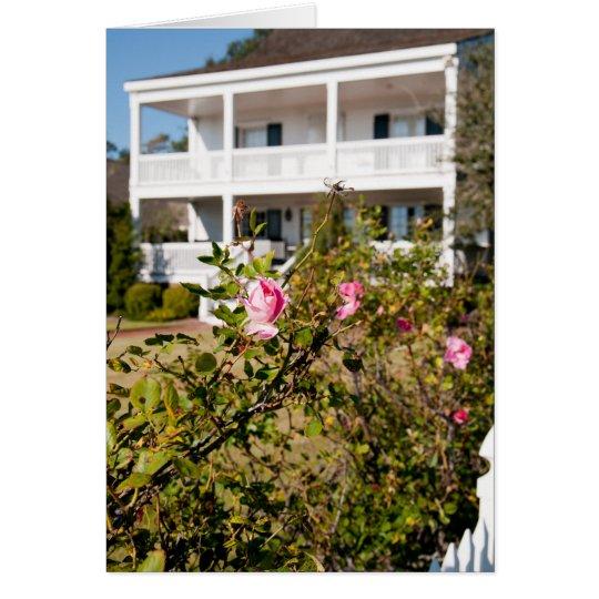 Color de rosa meridional salvaje tarjeta de felicitación