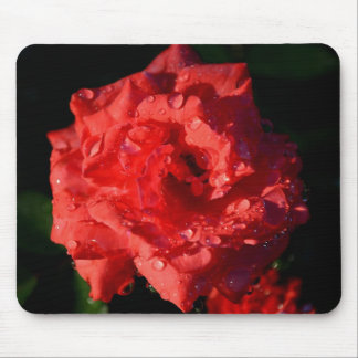 Color de rosa miniatura rojo con el mousepad de la