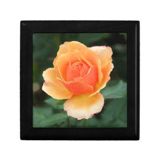 Color de rosa moderno anaranjado cremoso caja de recuerdo