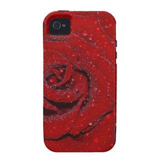 Color de rosa mojado iPhone 4/4S funda