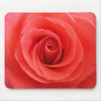 Color de rosa mousepads