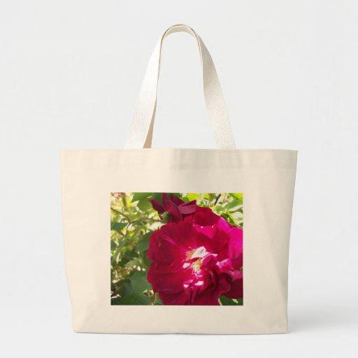 color de rosa muy abierto bolsas