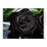 color de rosa negro tarjetas