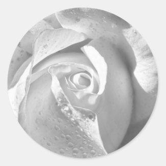 Color de rosa nupcial blanco romántico pegatina redonda