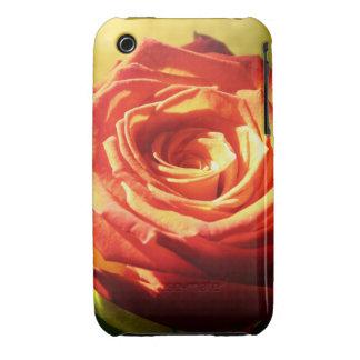 Color de rosa pasado de moda iPhone 3 fundas
